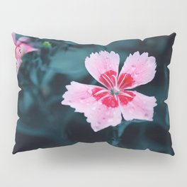 Flower Photography by Jimmy  Chang Pillow Sham