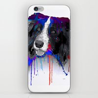 border collie iPhone & iPod Skins featuring Border Collie by Marlene Watson