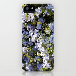 a violet flower in the heart of Athens iPhone Case