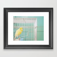 Yellow Bird against Turquoise Wall Framed Art Print