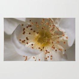 White bloom Rug