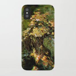 Leafs iPhone Case