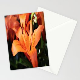 Garden Fire Stationery Cards