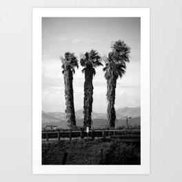 Cali ride Art Print