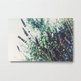 Field of Flowers 10 Metal Print