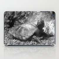 cheese iPad Cases featuring Cheese! by Amy C Peters