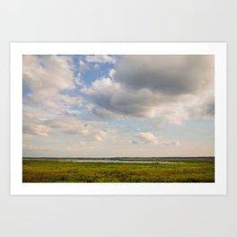 floridian prairie Art Print