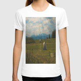 Country Sun  T-shirt