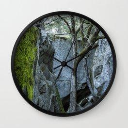 Tree Against Blue Rock Wall Clock