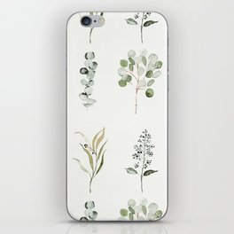 Eucalyptus Branches iPhone Skin