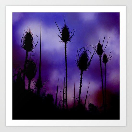 Teasel Skies Art Print
