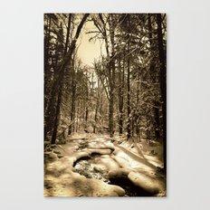 A Natural Path Canvas Print