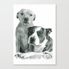 Rosie and Rocky the Staffies Print Canvas Print