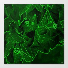 Ali - green Canvas Print