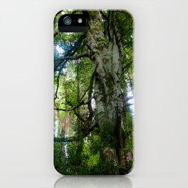 Grandmother Tree iPhone Case