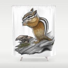 Chipmunk and mushrooms Shower Curtain
