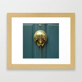 Horseshoe Crab Framed Art Print