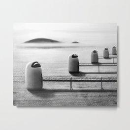 Desert cells Metal Print