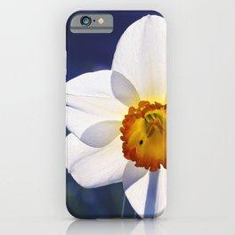 the genus of narcissus iPhone Case