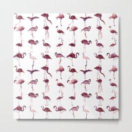 Flamingos Pink Pattern Metal Print
