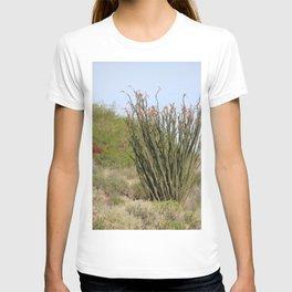 Jacobs Ladder Coachella Valley Wildlife Preserve T-shirt