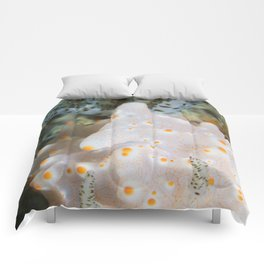 Halgerda batangas portait Comforters