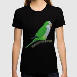 Cuddly quaker parrot T-shirt