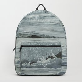 Harbor Seal, No. 1 Backpack