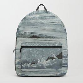 Harbor Seal, No. 1 Backpack