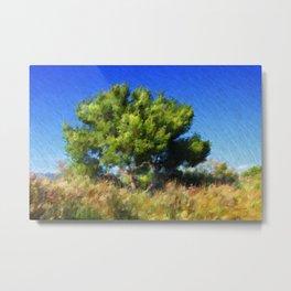 Maritime Pine Metal Print