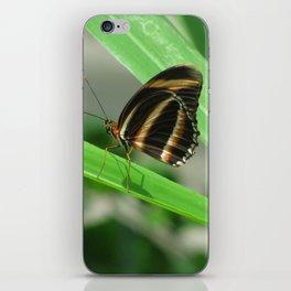 Gentle iPhone Skin