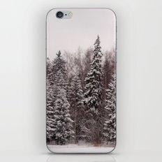 Winter 231 iPhone & iPod Skin