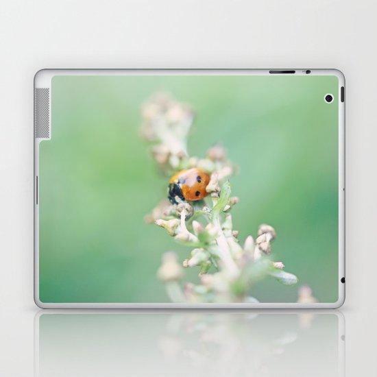 Enchanted Lady Laptop & iPad Skin