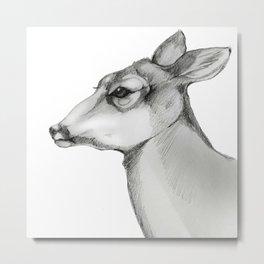 Doe a Deer/Always Metal Print