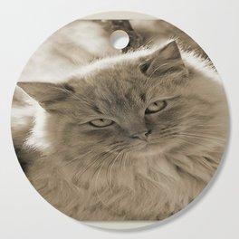 Sunlit Cat in Sepia Cutting Board