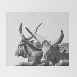Animal Photography | Ankole-Watusi | Cattle | Bull | Steer | Black and White Throw Blanket