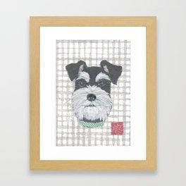 Schnauzer, DOG Framed Art Print