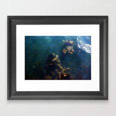 Selkies Framed Art Print