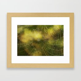 The Web we Weave Framed Art Print