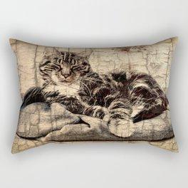 most phanastic tomcat ever Rectangular Pillow