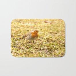 Hello Robin! Bath Mat