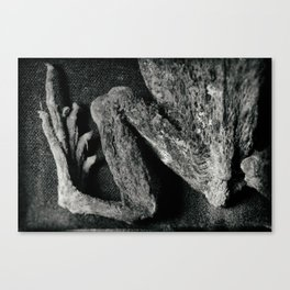 my dried frog Canvas Print