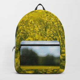 Golden Backpack