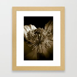 Sepia Poppy Portrait Framed Art Print