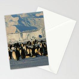 Penguin Stationery Cards