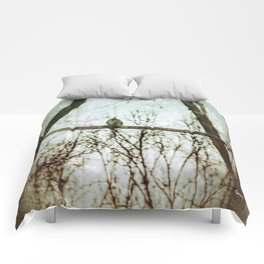 Lonesome Dove Comforters