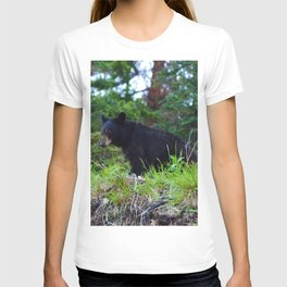 Young bear in Jasper National Park T-shirt
