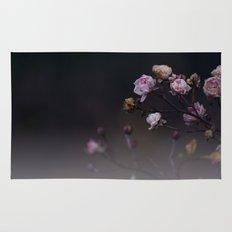 Delicate Dried Pink Mini Roses on Smoky Dark Grey Rug