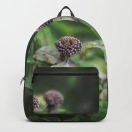 The Grey Allium Garden Backpack