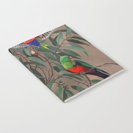 Birds of Paradise. Notebook